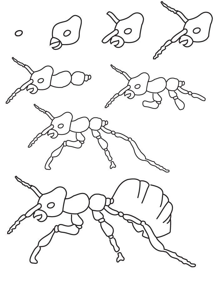 Dessin fourmi dessine moi un mouton en 2019 dessin - Dessin d une fourmi ...