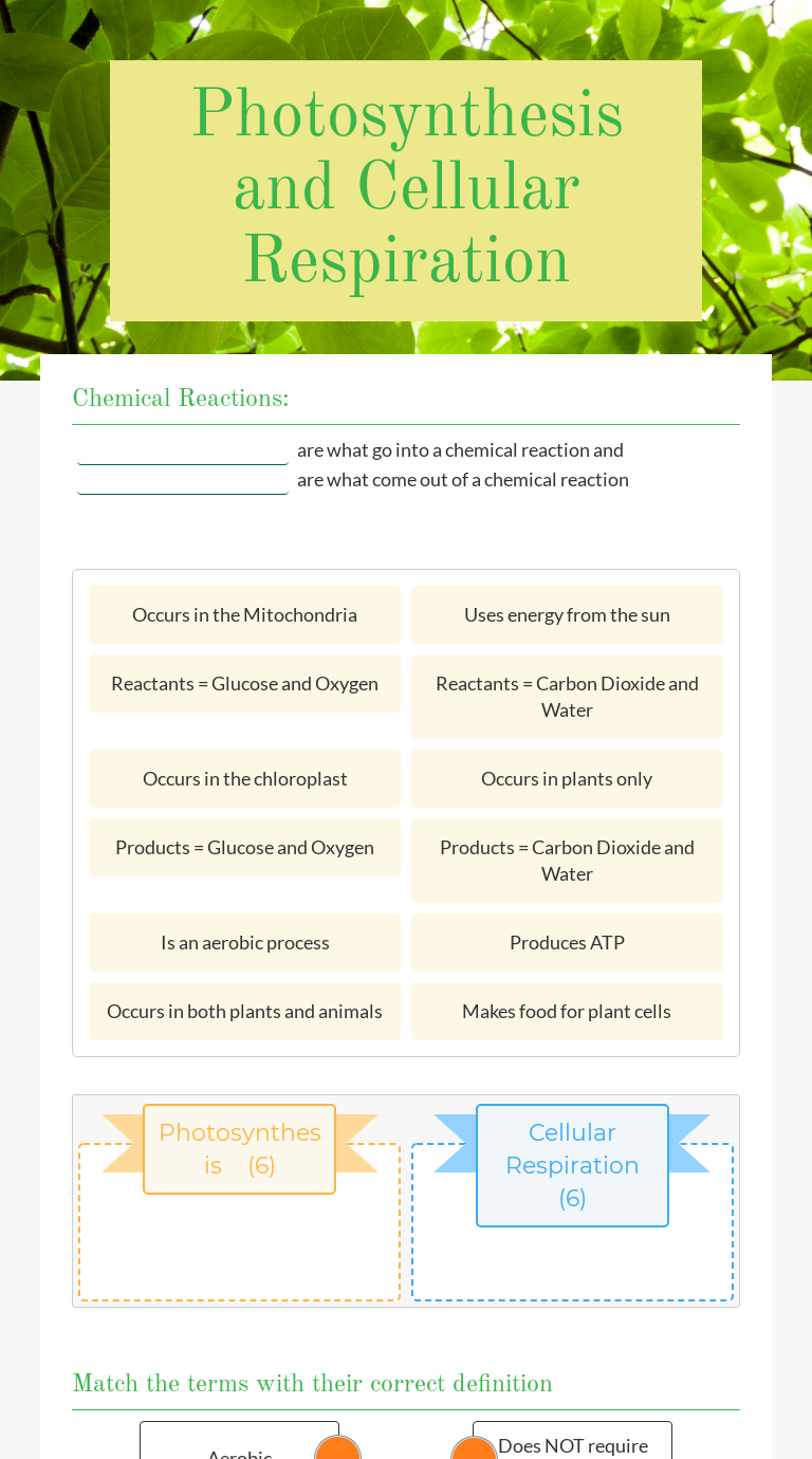 Photosynthesis and Cellular Respiration Worksheet in 2020