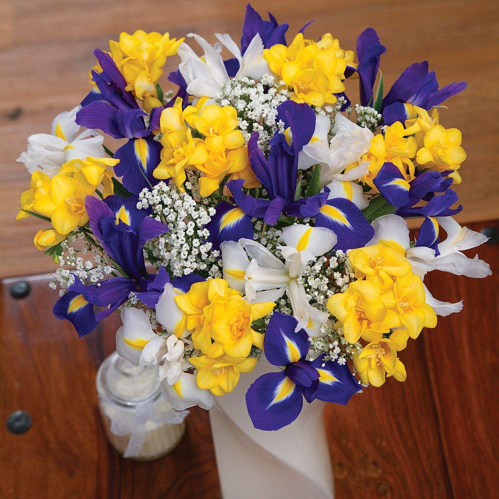 Iris and freesias white iris iris and flowers delivered iris and freesias flowers delivered by bunches izmirmasajfo Images