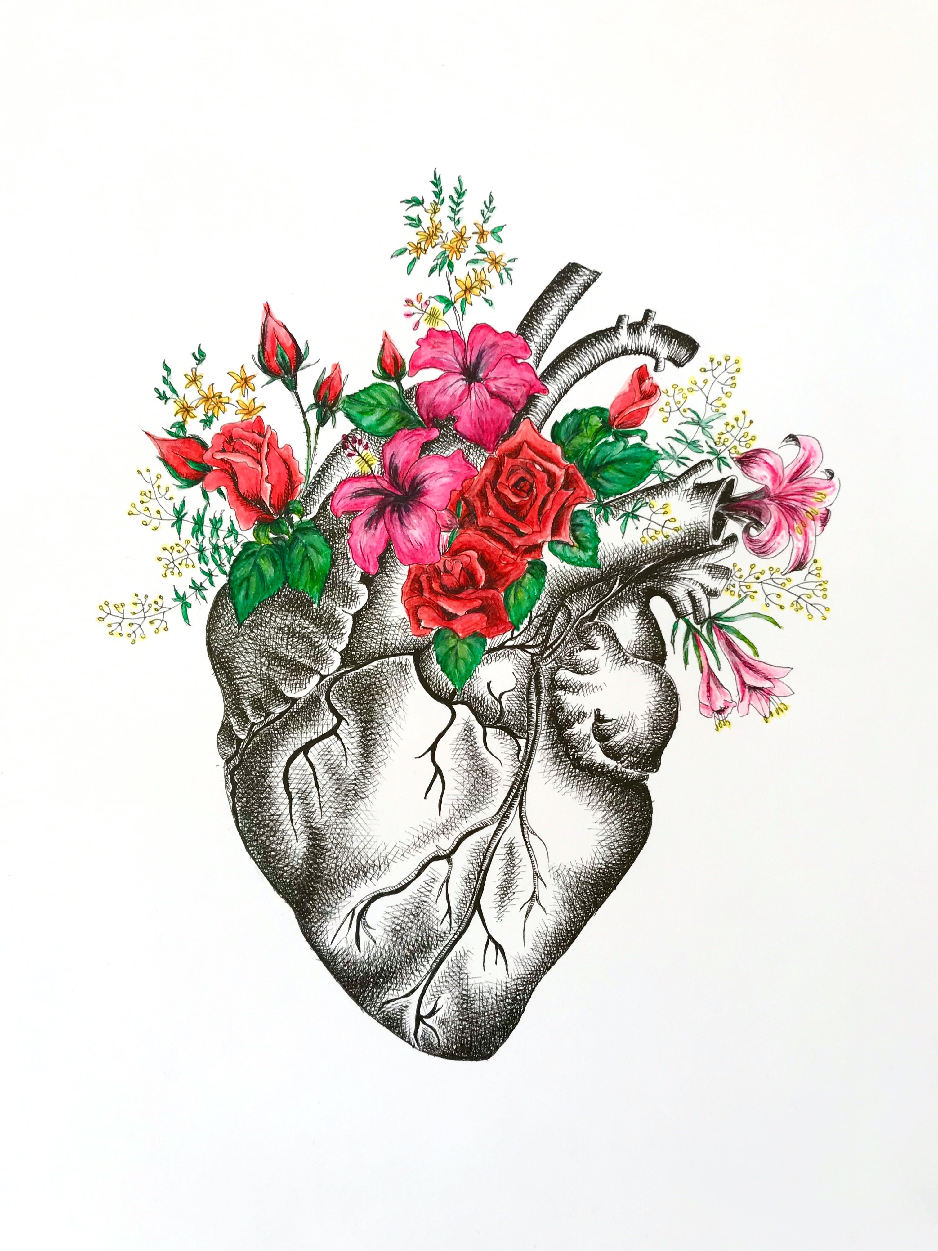 Anatomical Heart Drawing Tattoo