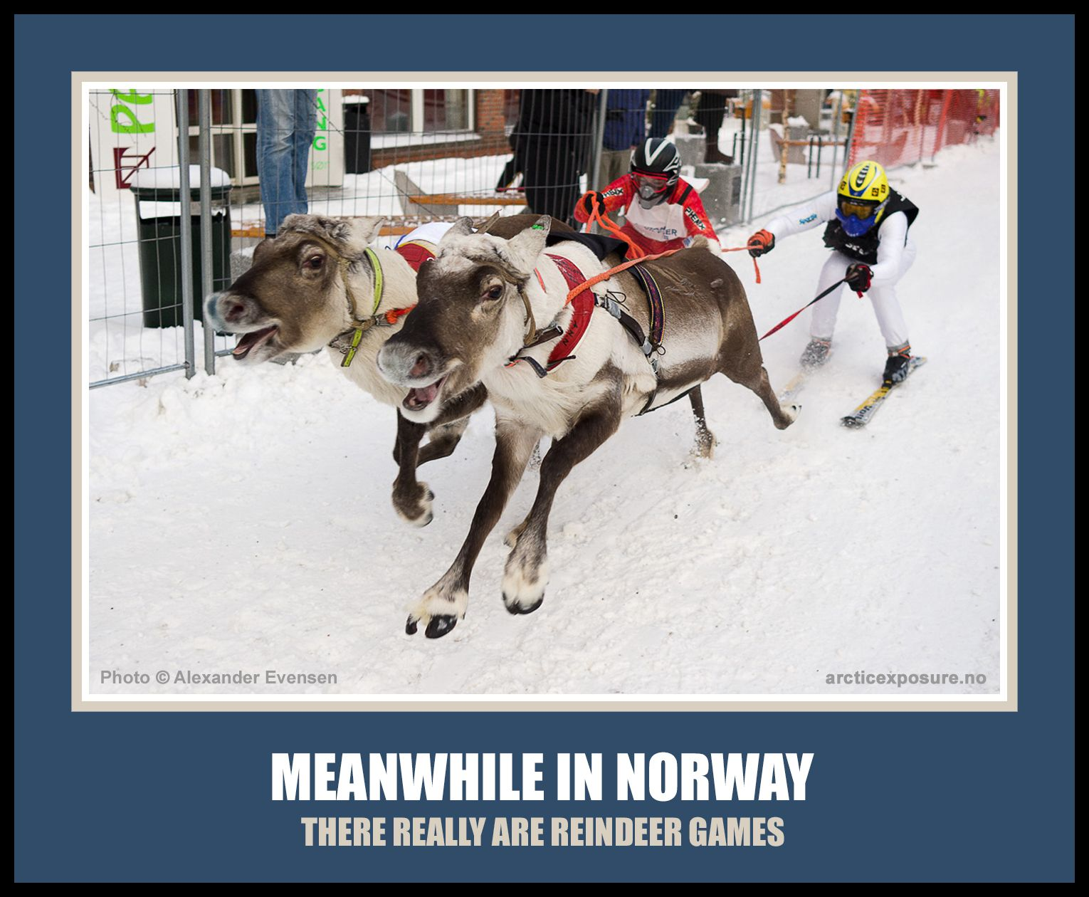 Pin On Norway Norsk Humor