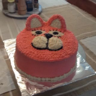 Kitty Cat Birthday Cakenot Sure About Frosting