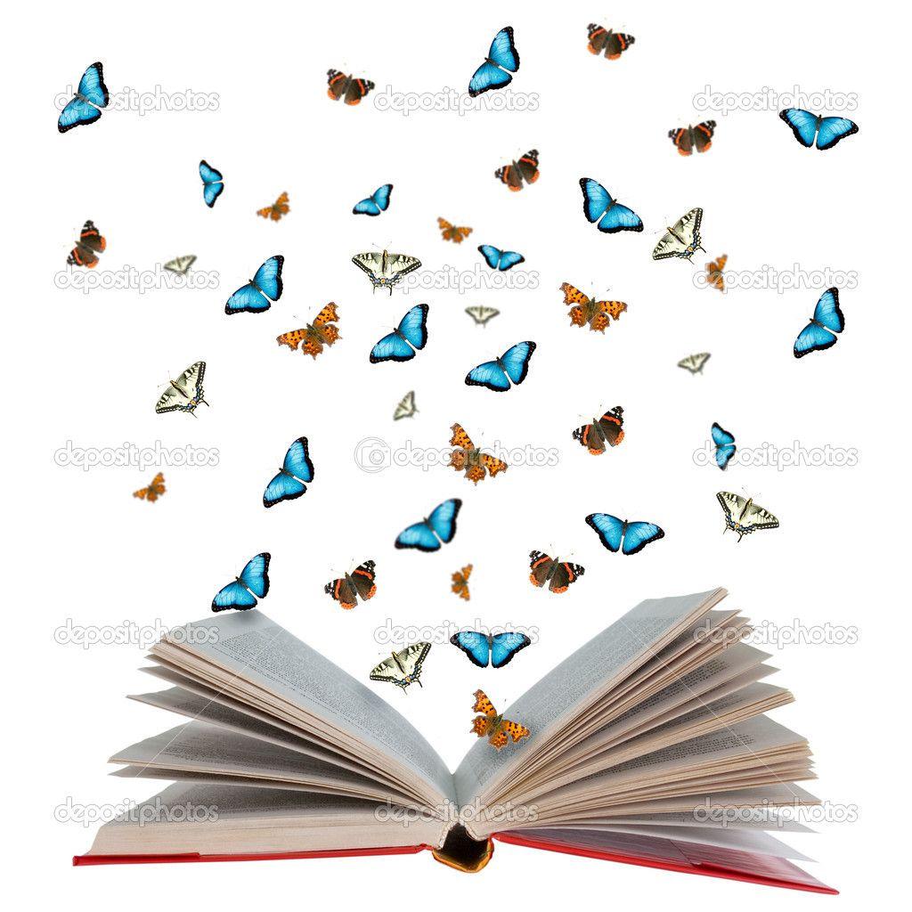 butterfly book - Cerca con Google