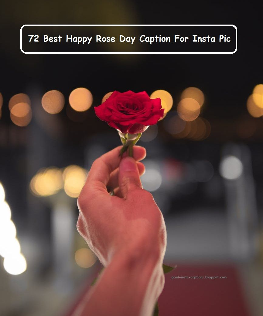 72 Best Happy Rose Day Caption For Insta Pic Good Instagram Captions Rose Pic Good Insta Captions