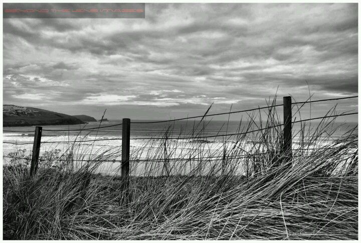 'Through The Fence'