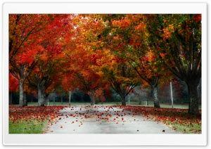 Autumn Ultra Hd Wallpapers For Uhd Widescreen Ultrawide Multi Fall Wallpaper Autumn Nature Autumn Landscape