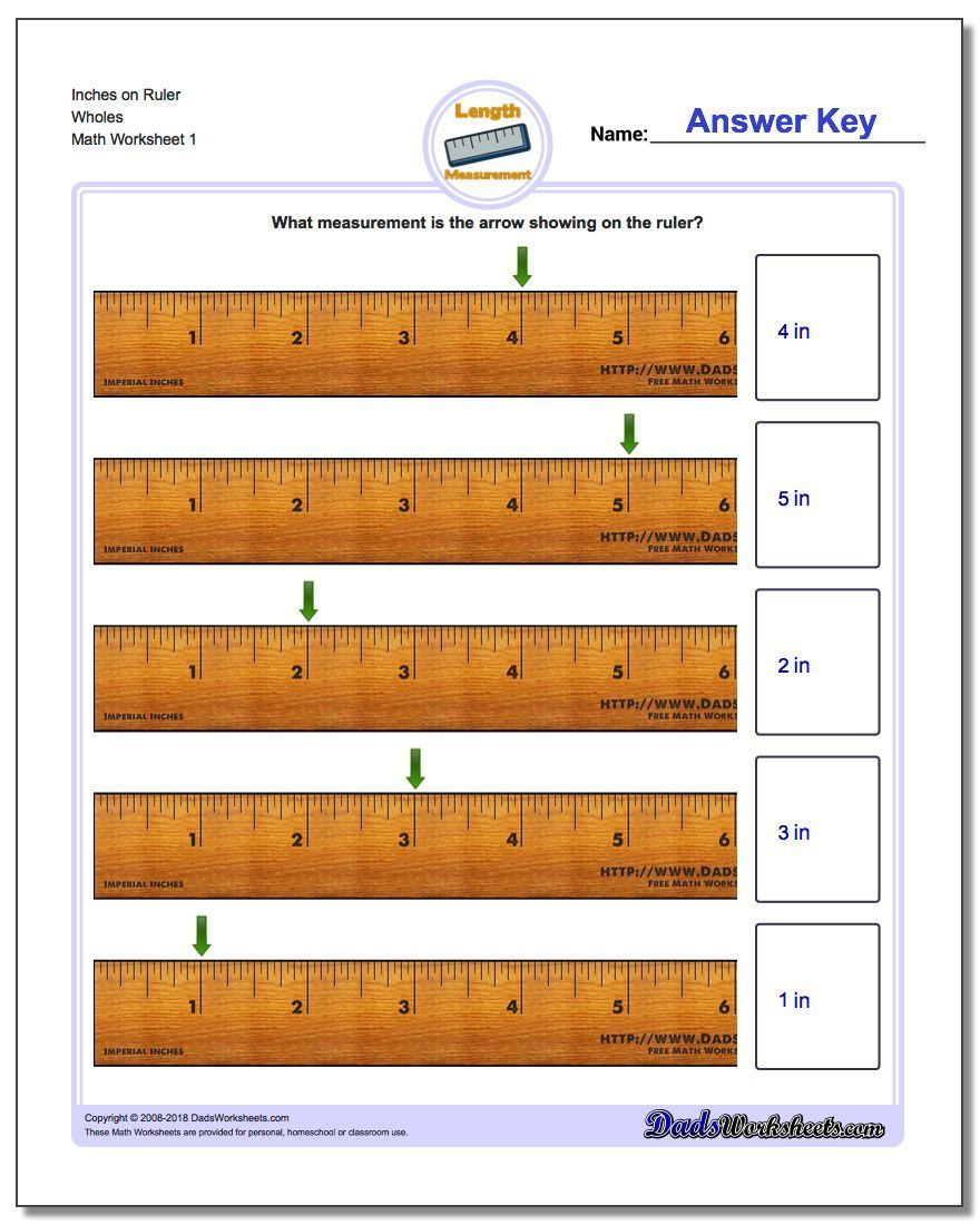 Inch Ruler Worksheets Check The Site Out For More Variations Including Centimeter Measurements Ever Measurement Worksheets Math Worksheet Ruler Measurements