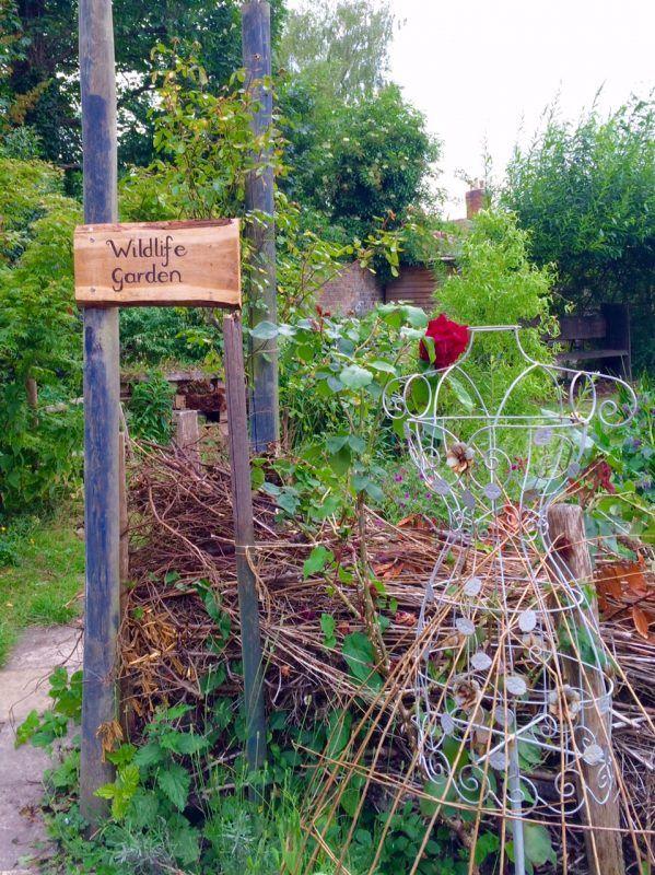 What makes a good wildlife garden | Gardens