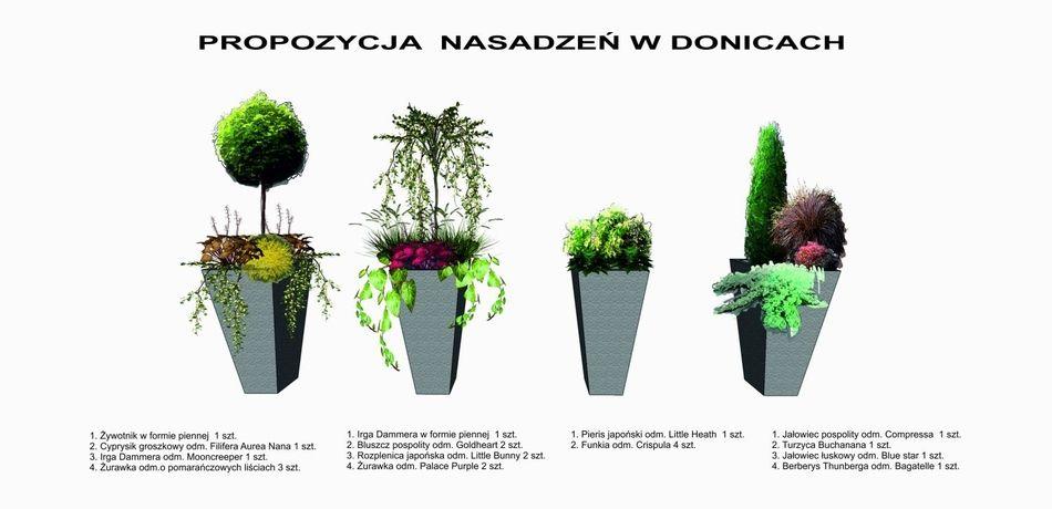 Projekt Przedogrodka Przy Domu W Zabudowie Blizniaczej Projektowanie Plants