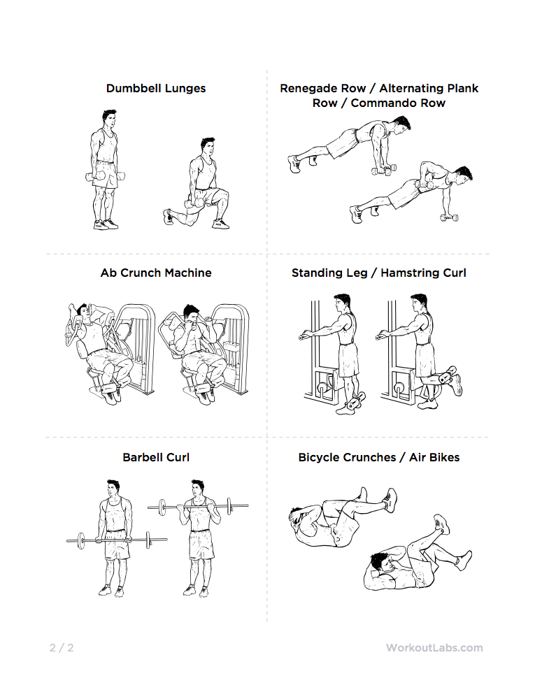 the muscle definition builder full body gym workout