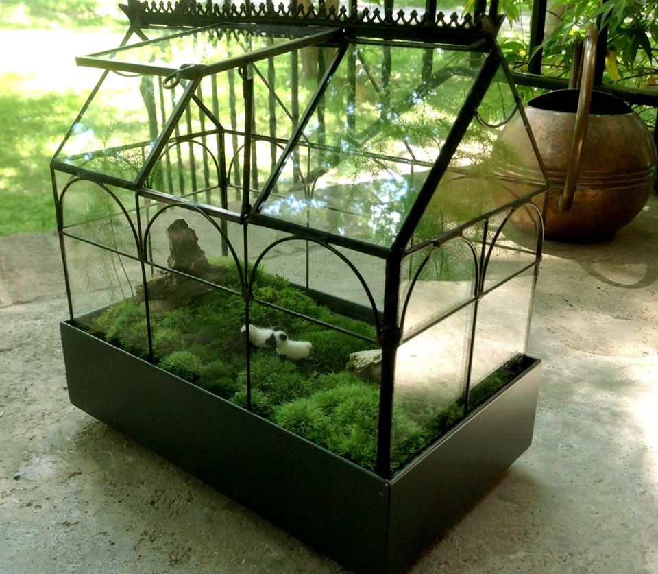wardian terrarium created for a flower show project with moss plumosa and small felted sheep. Black Bedroom Furniture Sets. Home Design Ideas