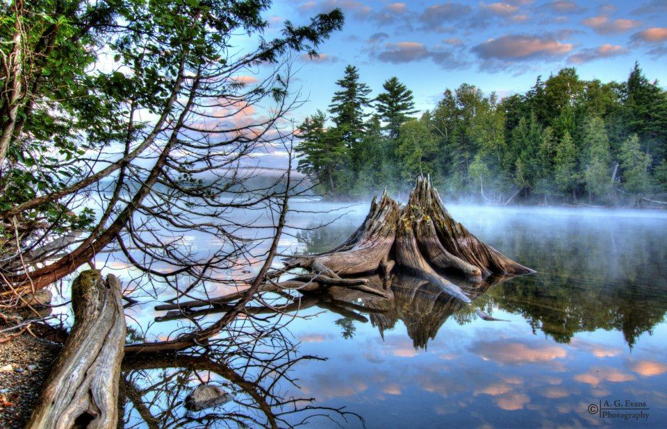 Lily Bay State Park at Moosehead Lake   Bar Harbor Maine & sites in Lilly Bay State Park on