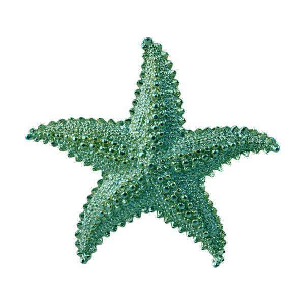 Starfish Images Clip Art Starfish Transparent Png Image Starfish Drawing Starfish Starfish Clipart