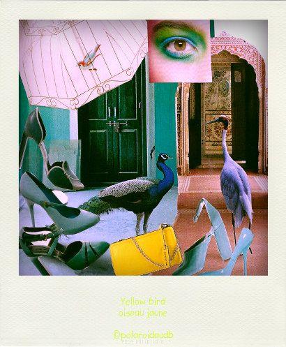 postcard  yellow bird par polaroidaudb sur Etsy, $3,58