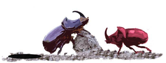 La Batalla de los Escarabajos - Una práctica sobre evolución y selección natural para alumnos de 3º y 4º de Primaria.