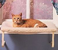 a cat window perch allows your cat to see outside without risking going outside  your cat will enjoy this hammock style window perch that easily attaches to     a cat window perch allows your cat to see outside without risking      rh   pinterest co uk