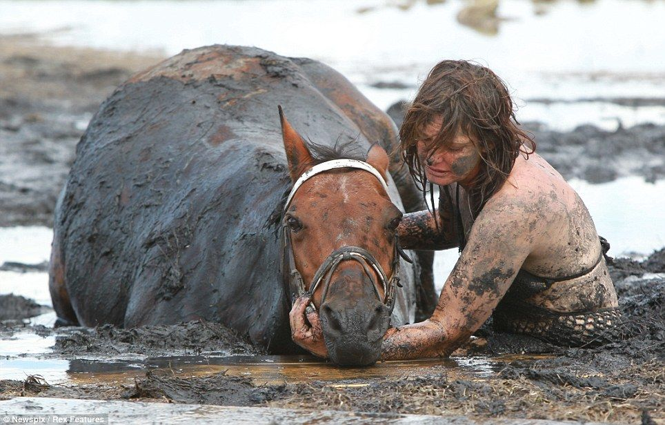 Race against the tide: Bravery of young mother who stayed by her horse's side for THREE HOURS after getting trapped in mud 'like quicksand'    Read more: http://www.dailymail.co.uk/news/article-2107521/Bravery-young-mother-stayed-horses-hours-getting-trapped-mud-like-quicksand.html#ixzz1nmqGrTH6