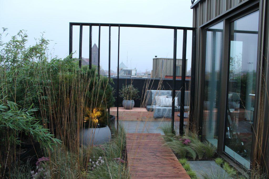 Modern dakterras van eigen huis tuin in het nofruit