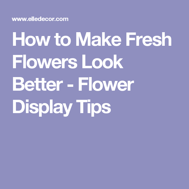 How to Make Fresh Flowers Look Better - Flower Display Tips
