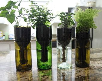 Wine Bottle Hydro Planter Self Watering Upcycled Garden