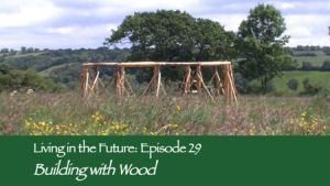 Episode 29: Building with Wood - Films About Ecovillages, Communities, Sustainable Homes and Natural Living