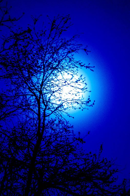 Moon Mist Blue Aesthetic Beautiful Moon Beautiful Nature