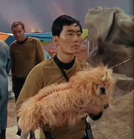 Star Trek - Season 1 Episode 5 - The Enemy Within - the dog had