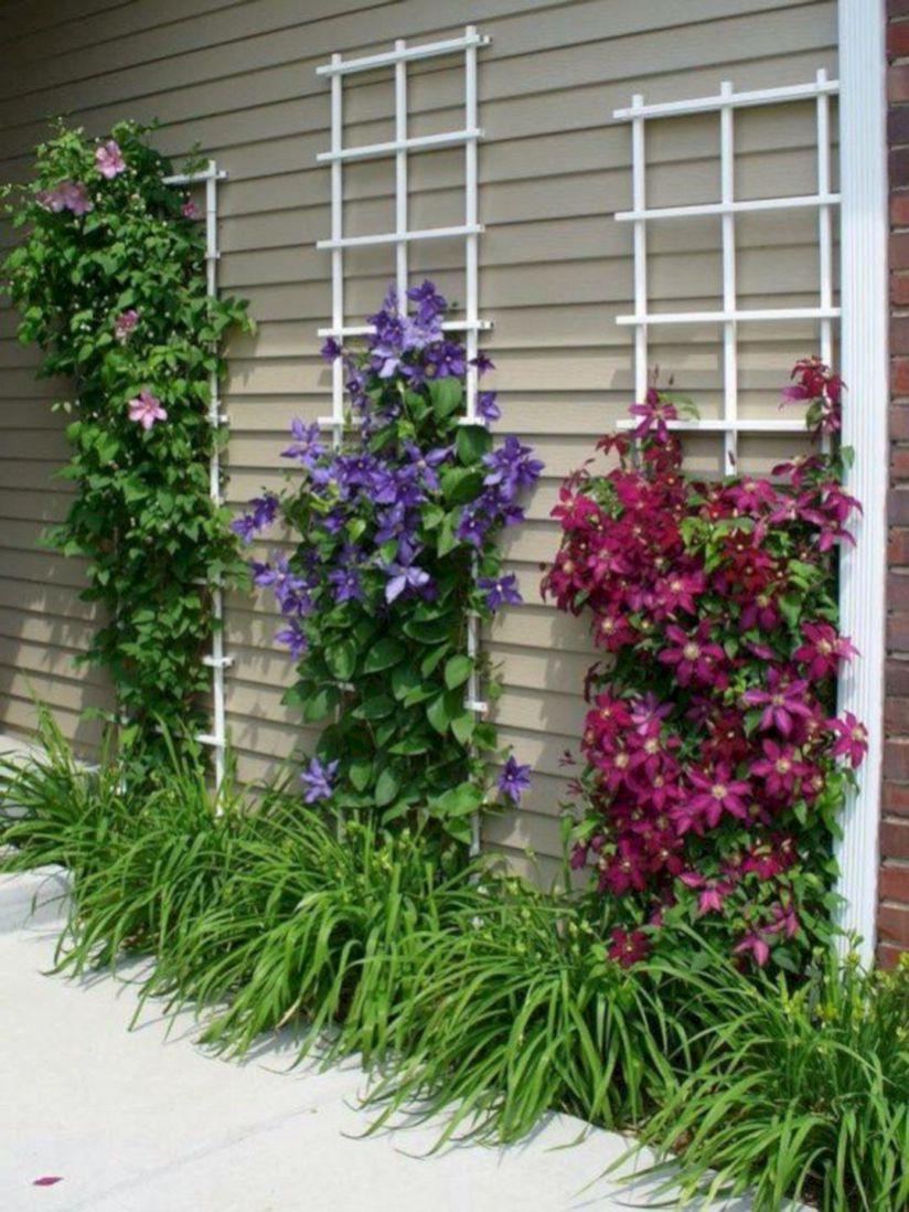 Beautiful Minimalist Vertical Garden For Your Home Backyard Goodsgn Com 35 Climbing Flowers Garden Design Flower Garden