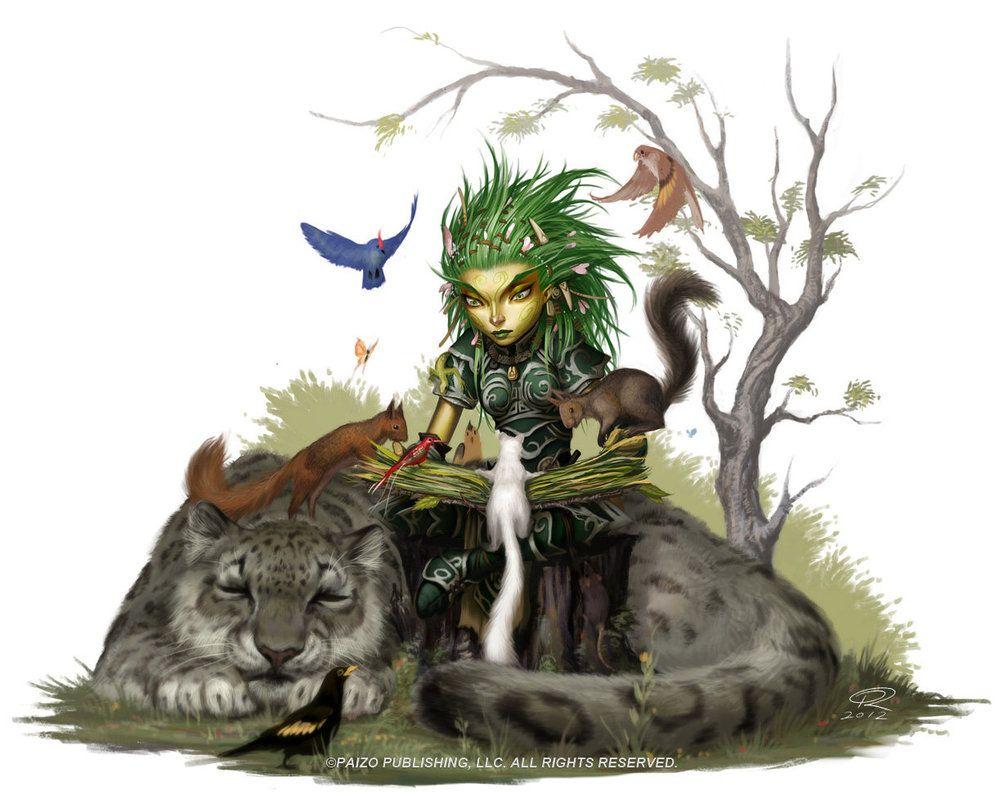Druid Studies With Animals by Akeiron on DeviantArt   Fantasy ...