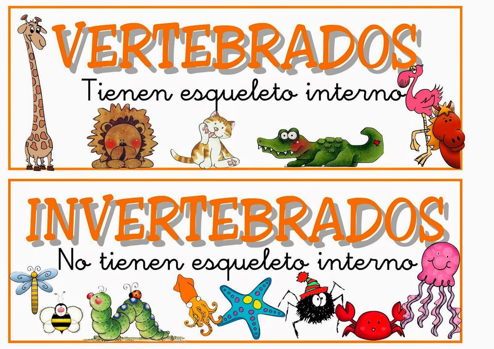 Vocabulario En Imágenes Maestra De Infantil Y Primaria Carteles Con La Clasificación De An Vertebrados E Invertebrados Clasificación De Animales Vertebrados