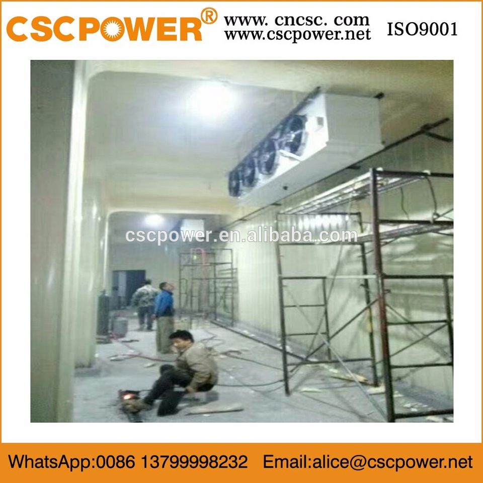 Cold Storage Cold Room Cooling System Refrigeration Unit With