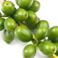 Green coffee bean caffeine image 5