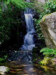 afedf4a18f97b8b5af93cccce3e159a7 - Best Time To Visit Cowra Japanese Gardens