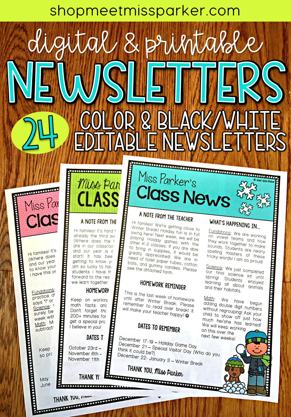 Newsletter Templates Editable Digital  Printable  Newsletter