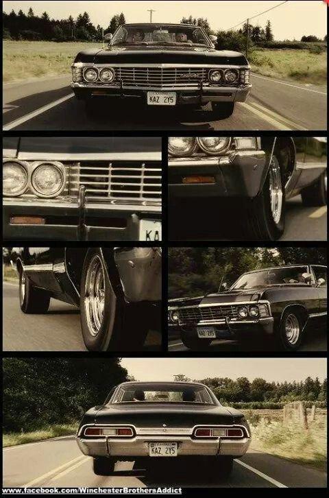 Impala baby So perfect