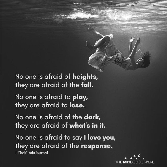 No One Is Afraid Of Heights