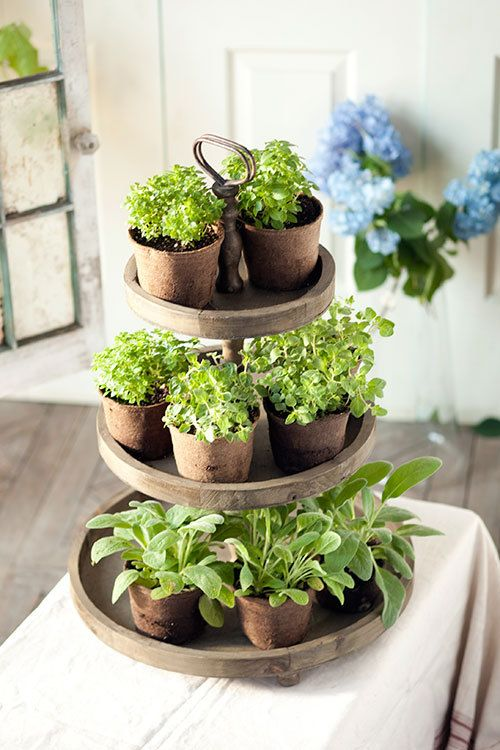 3 Tier Round Display Tray Decor Country Farmhouse Decor Herbs Indoors