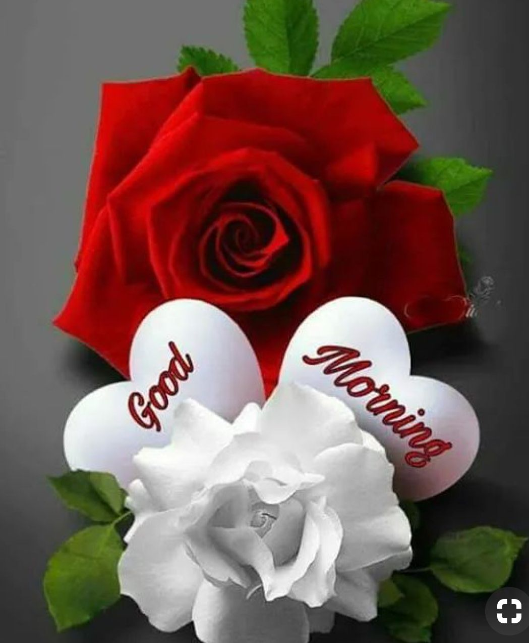 Good Morning Sister Have A Great Day Good Morning Flowers Good Morning Beautiful Flowers Good Morning Happy Sunday