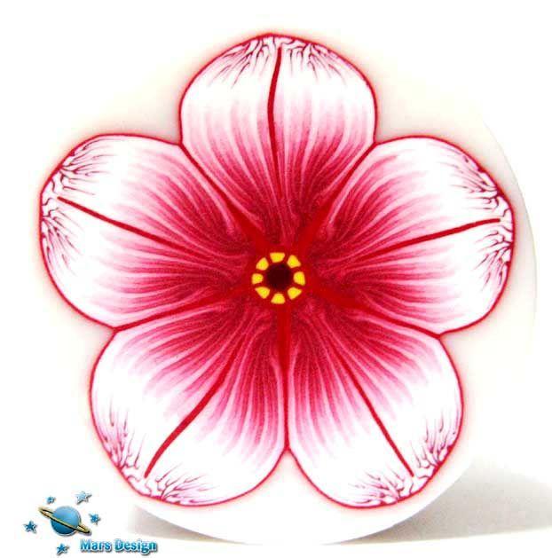 Red white flower cane | Flickr - Photo Sharing!