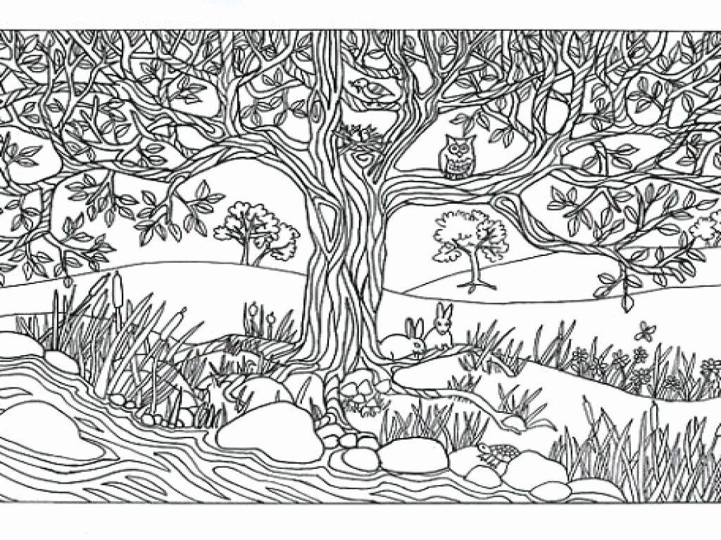 Landscape Coloring Pages To Print Lovely Sweet Design Free Printable Waterfall Coloring Pages Rain Pa In 2020 Coloring Pages Nature Coloring Pages Tree Coloring Page