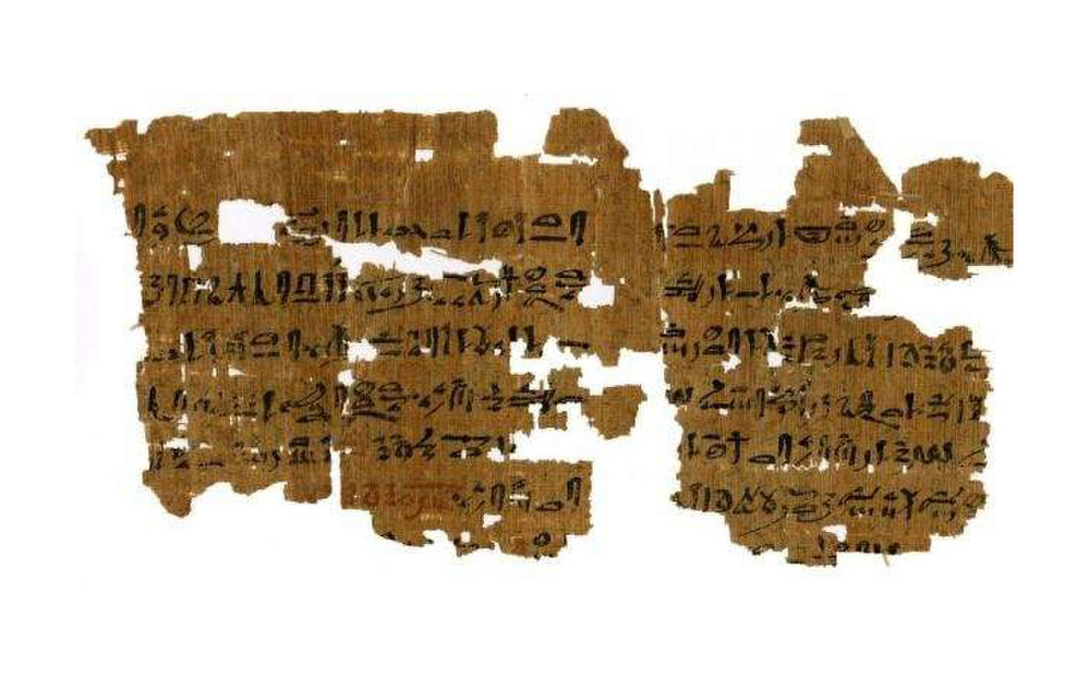 Egyptian Papyrus Reveals Rare Details Of Ancient Medical