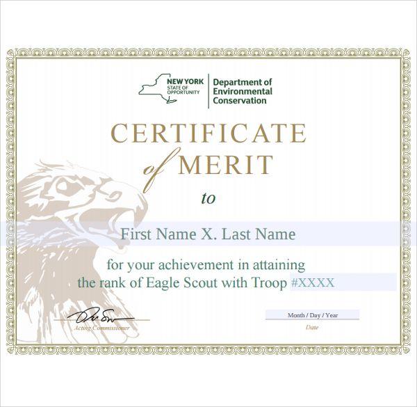 10+ Merit Certificate Templates Free Printable Word  PDF