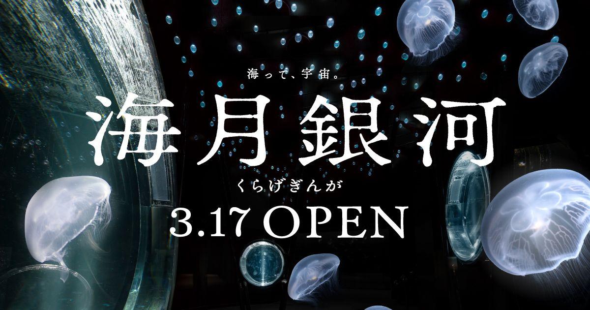 クラゲ展示エリア 海月銀河 展示 館内紹介 海遊館 銀河 クラゲ バナーデザイン