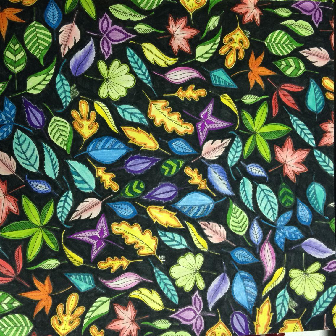 Secret garden coloring book website - Jardim Secreto Johanna Basford Secret Garden