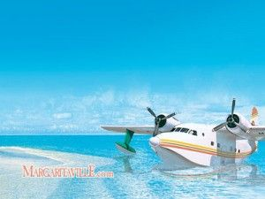 land in a sea plane