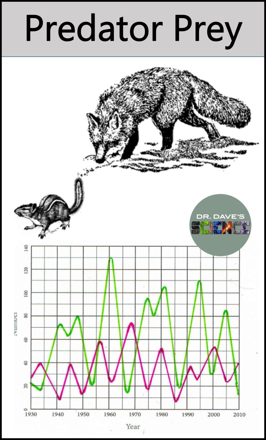 Predator prey relationship and graph environmental science a predator prey activity for an ecology or environmental science unit the graph is differentiated robcynllc Gallery