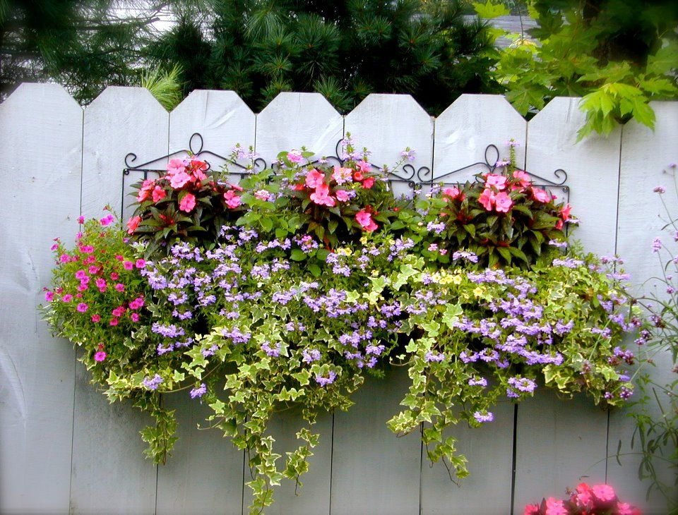 Beautiful planter on a fence