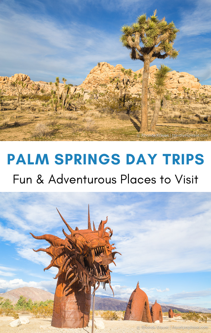 Palm Springs Day Trips- 6 Fun and Adventurous Plac