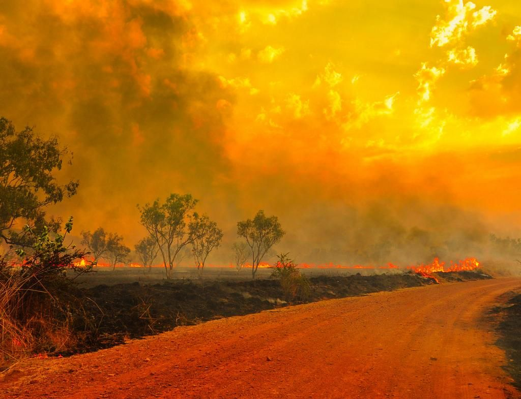 Bush fire Australia Australia, Indian ocean, New south wales