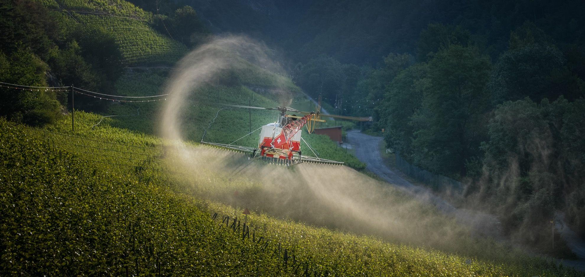 The VRASF Vuichard Recovery Aviation Safety Foundation